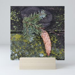 Pine Cone on Weathered Wood Mini Art Print
