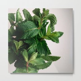 The Avant-Garden Forage || Mint Leaves  Metal Print
