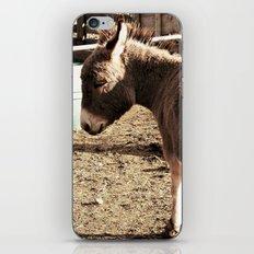Eeyore iPhone & iPod Skin