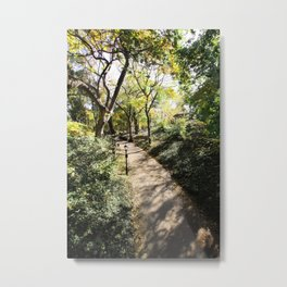Pathway in Central Park, New York Metal Print
