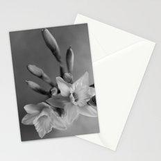 Daffodil days Stationery Cards