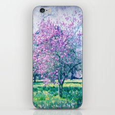 Glossed with Summer Sheen iPhone & iPod Skin