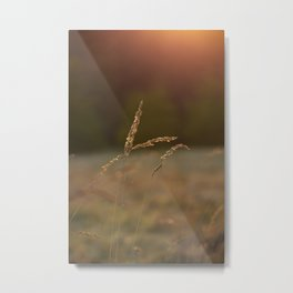 Listen to the Calm Sunset | Photography | Art print | Photo print Metal Print