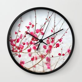Beautiful Cherry Blossoms at the Imperial Palace in Kyoto, Japan Wall Clock
