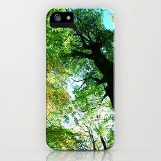 Smoky Mountain Canopy  iPhone (5, 5s) Slim Case