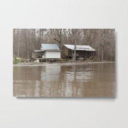 In the Swamp Metal Print