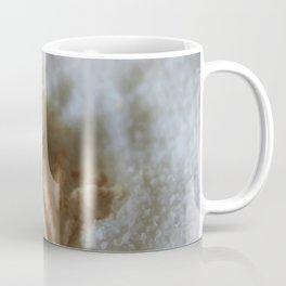 Seashells 1 Coffee Mug