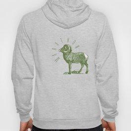 RAM TEE OLIVE GREEN Hoody