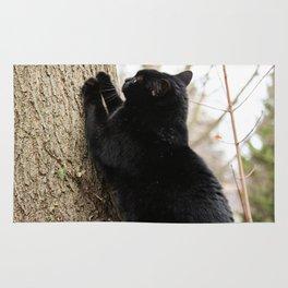 Cat Scratch Fever Rug
