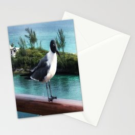 The Pigeon of Nassau Stationery Cards