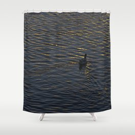 Lonely Duck Swimming at Lake at Sunset Time Shower Curtain