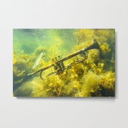 Songs from the Baltic Sea Metal Print