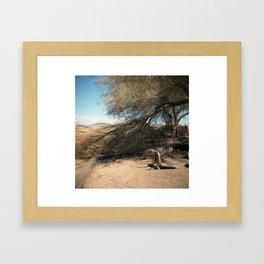 bombay beach  Framed Art Print