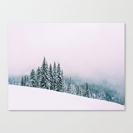 Angled Snow Canvas Print