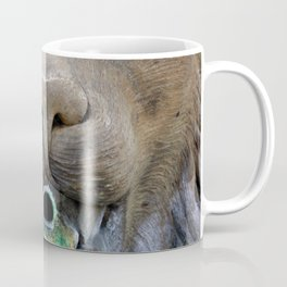 Lion Fountain Coffee Mug