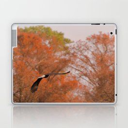 Fall Eagle Laptop & iPad Skin