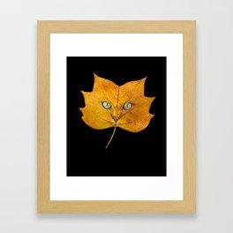 Autumn Cat-2 Framed Art Print