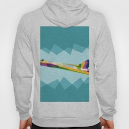 Colorful Jets Hoody