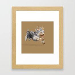 A Yorkie called Joy Framed Art Print