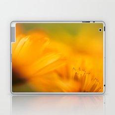 let the sunshine in Laptop & iPad Skin