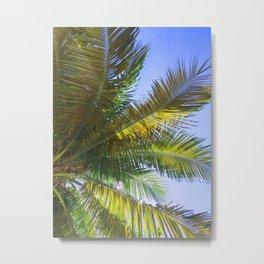 118. Greenery Palm Tree, Cuba Metal Print