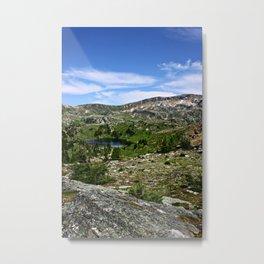 Trophy Meadows - Wells Gray, British Columbia, Canada Metal Print