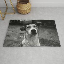 Dog by Anna Stampfli Rug