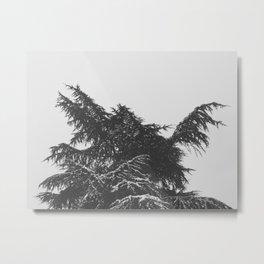 Snow Daze 3 Metal Print