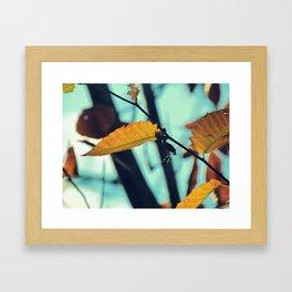 Famous fall 24 Framed Art Print