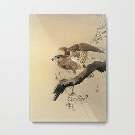 Ohara Koson, Hawk On The Tree Branch - Japanese Vintage Woodblock Print Metal Print