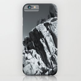 Big Rock 5793 Joshua Tree iPhone Case