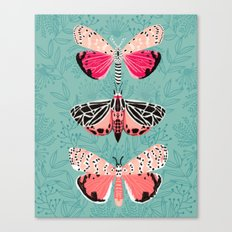Lepidoptery No. 6 by Andrea Lauren Canvas Print
