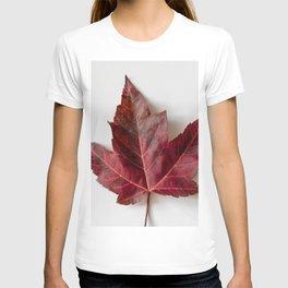Single Maple Leaf T-shirt