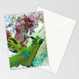 The Singing Nudibranch Stationery Cards