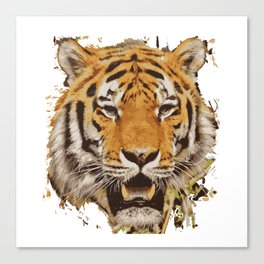 tiger face vektor Canvas Print
