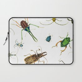 Bug Life - Beetles - Bugs - Insects - Colorful - Insect Pattern Laptop Sleeve