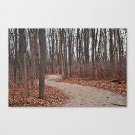 Michigan In Autumn Canvas Print