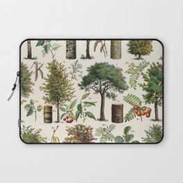 Adolphe Millot - Arbres B - French vintage botanical poster Laptop Sleeve