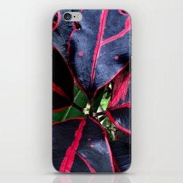 Spectacular Tropical Exotic Hawaiian Plant iPhone Skin