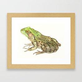 Green Frog Framed Art Print