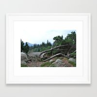 nordic Framed Art Prints featuring Nordic by silviadevries