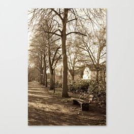 A lonely world Canvas Print