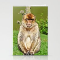 ape Stationery Cards featuring Barbary ape by Pirmin Nohr