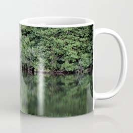 Mirror Lake House Coffee Mug