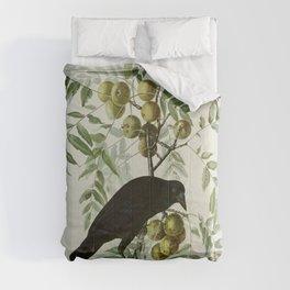 Vintage Crow Illustration Comforters
