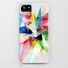Colorful 2 X iPhone (5, 5s) Slim Case