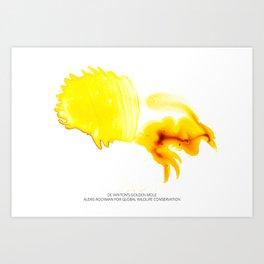 De Winton's Golden Mole Art Print