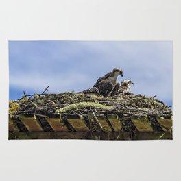 Osprey Parenting 101 Rug