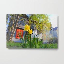 Daffodils and Dilapidation Metal Print