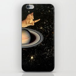 Cat.In.Space. iPhone Skin